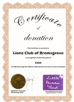Certificate from Little Princess Trust acknowledging donation of £500 January 2010